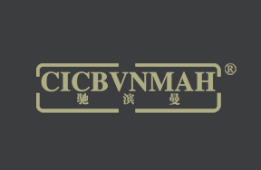 驰滨曼-CICBVNMAH