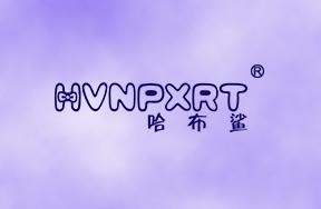 哈布鲨-HVNPXRT